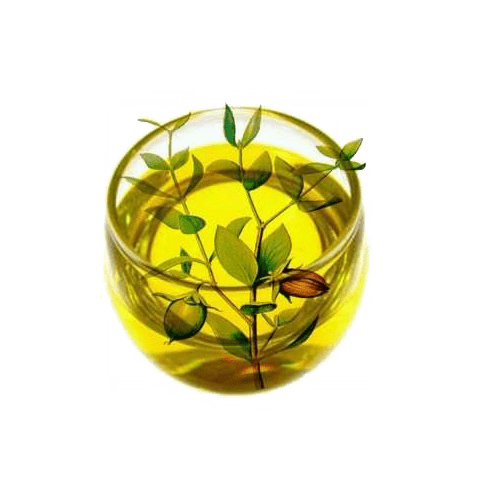 Jojoba Oil-PNGTREE.COM
